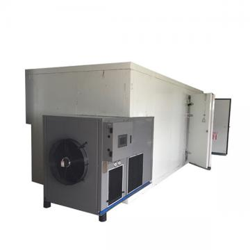 Commercial Vegetable Food Dehydration Equipment for Sale